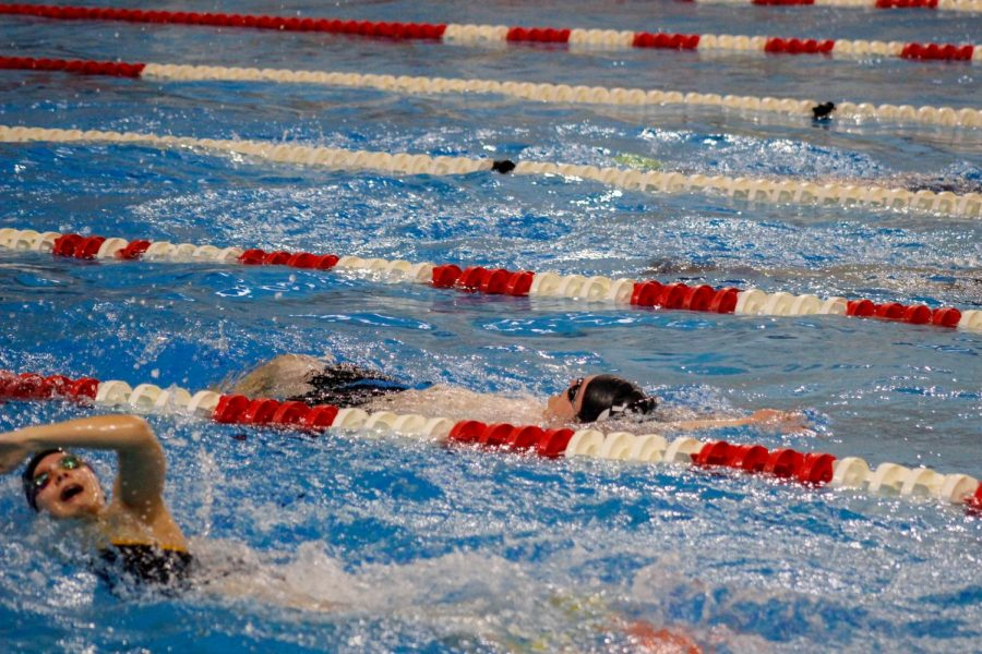 Diving into the 2019-2020 Swim Season